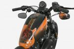 Harley Xutos