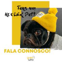 kooler_pet (1)