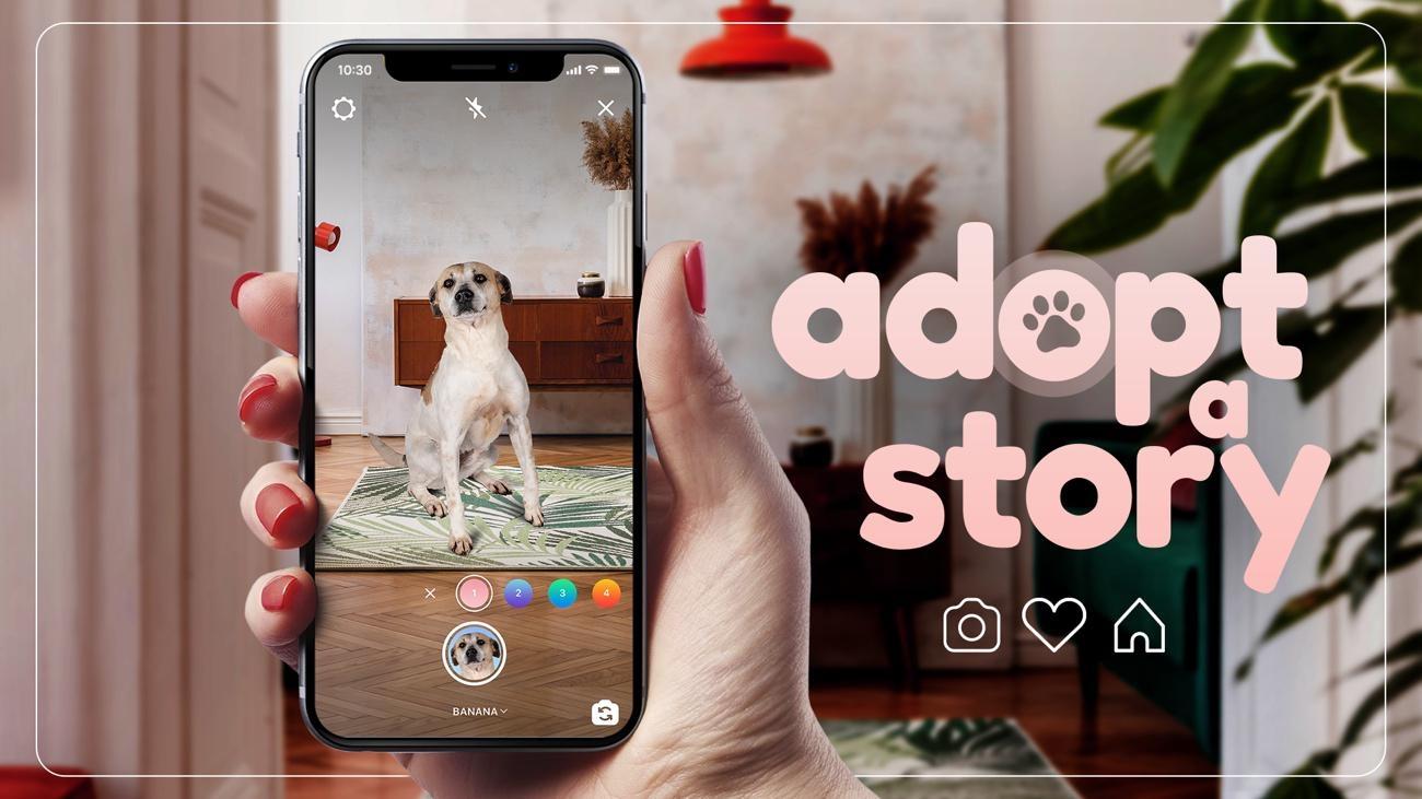 Adopt a Story